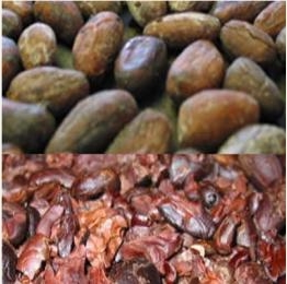 cacao color(flavonoid/ color value indication)