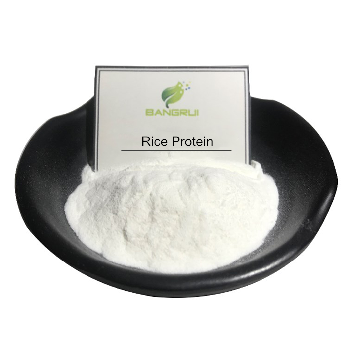 High quality Bulk rice protein isolate powder for sport food additive