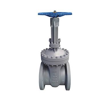 Manual power station gate valve