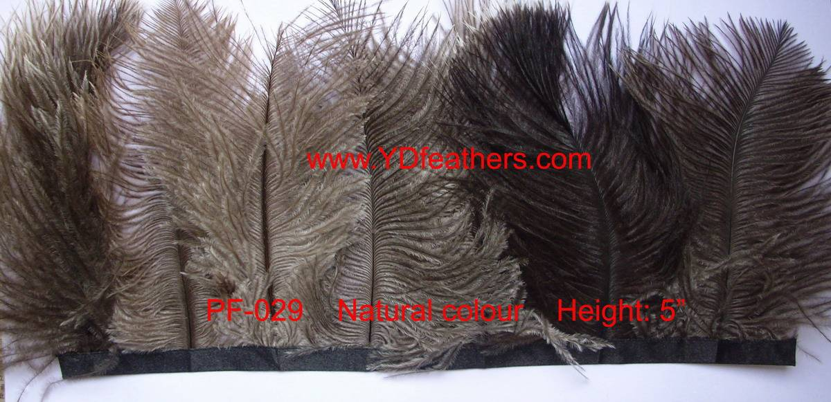 feather fringe-029