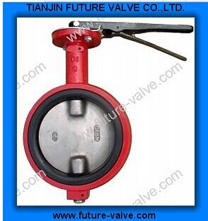 No Ear Wafter Type Butterfly Valve with Two Stems (D71X)