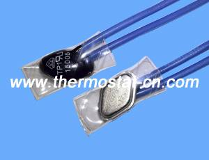 TP1 thermal cutout, TP1 temperature switch