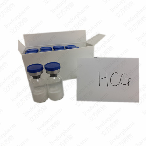 Healthy Peptide Human Chorionic Gonadotropin HCG for Pregnancy Test