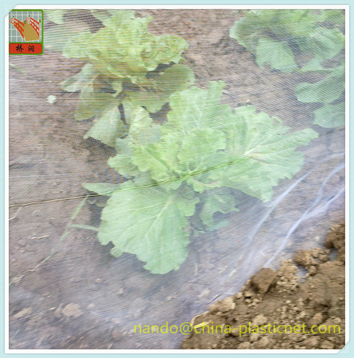 Agriculture & Farming - Plant and crops protection-Anti insects mesh, insect netting,PE Woven Nettin