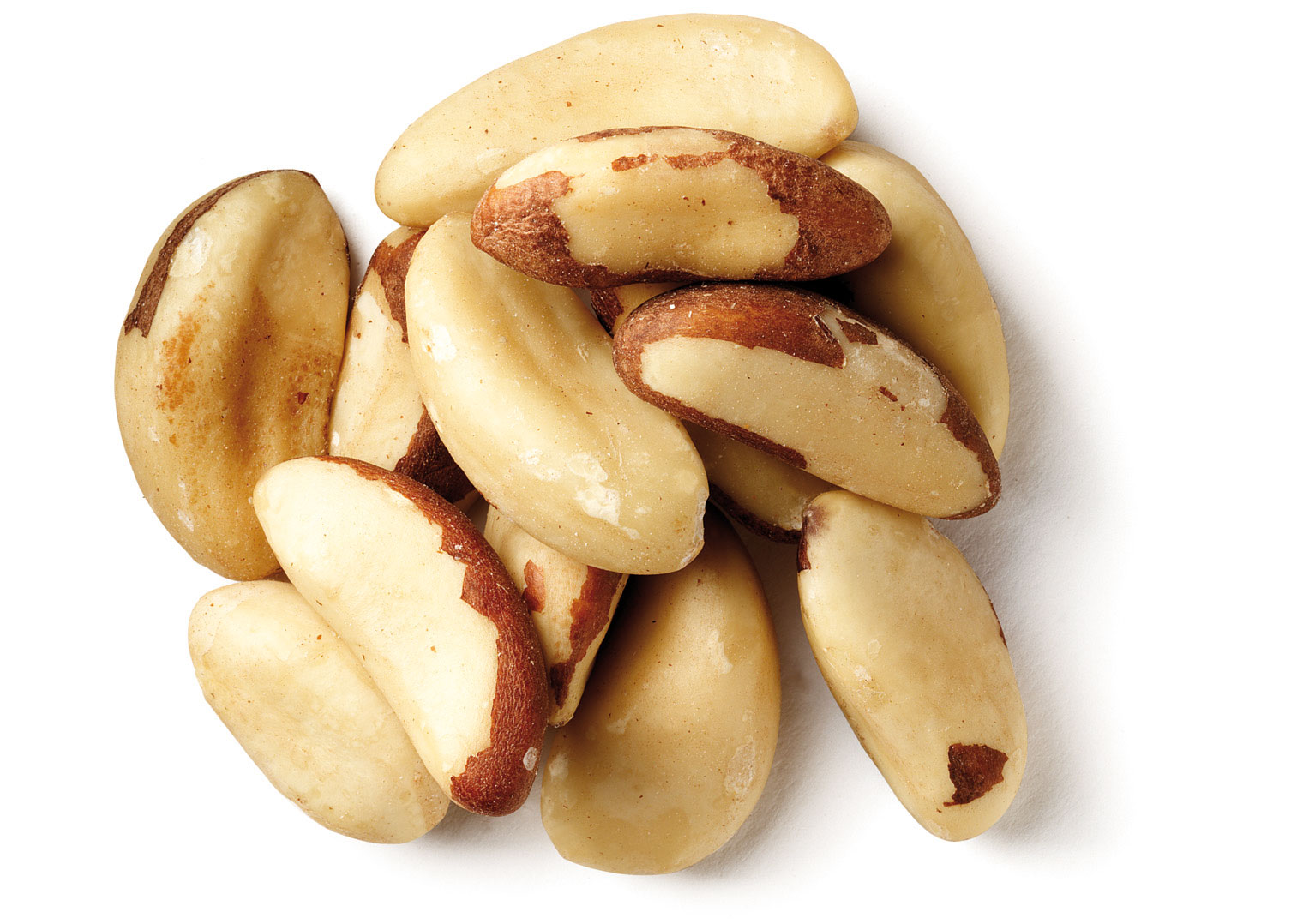 Organic and Conventional Brazil Nuts Raw Sizes Brazil Nuts Top Quality.