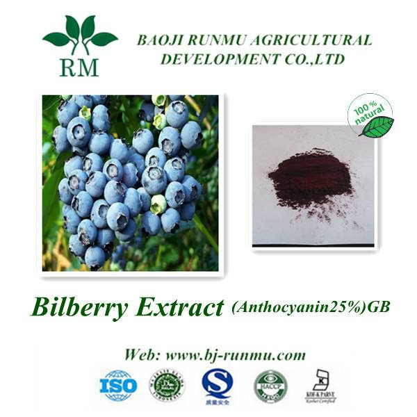 bilberry extract anthocyanidins 25%