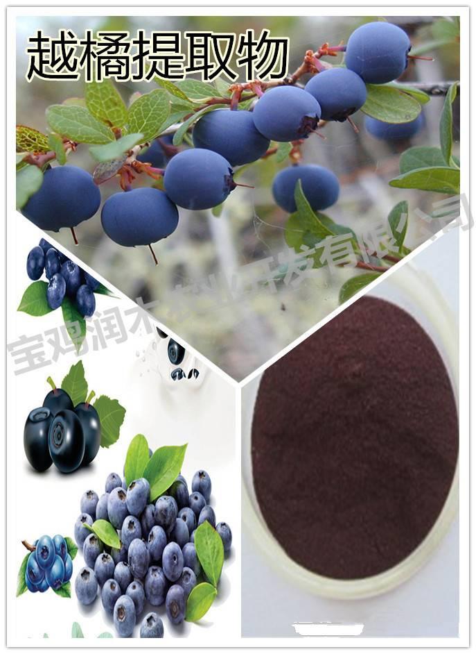 anti-aging bilberry anthocyanidins 25%