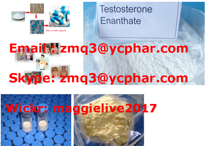 Pharmaceutical Steroid Raw Material Testosterone Enanthate Test Enan for Bodybuilding