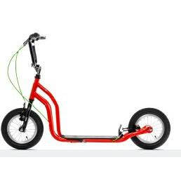 Beautiful Shaped Foot Scooter for Youngers