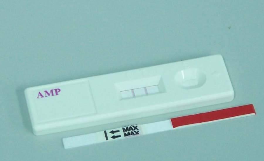 Amphetamine(AMP) rapid test