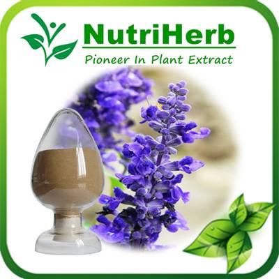 Rosemary Leaf Extract 5-98% Carnosic Acid