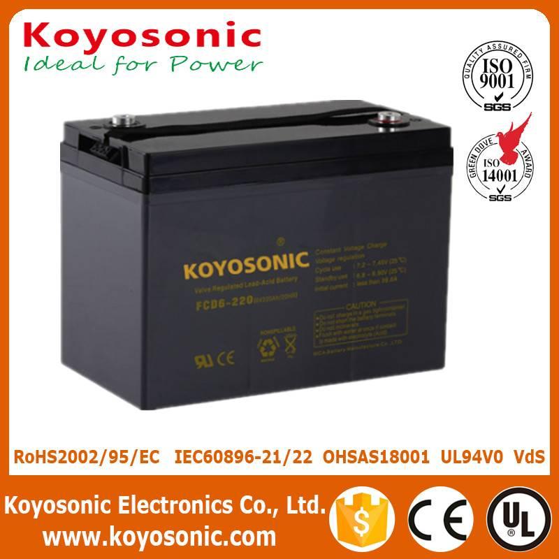 Good Qualtiy 6V 220AH Deep Cycle Battery AGM Battery Motive Power Battery