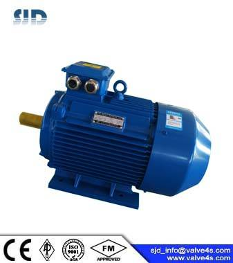 YE3 Series Super-High Efficient 3-Phase Asynchronous Motor
