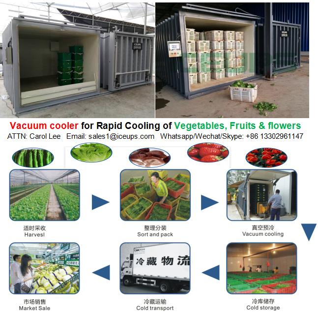 Vegetable Vacuum Cooler from 300kg~5000kg