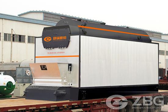 DZL Biomass Fired Boiler