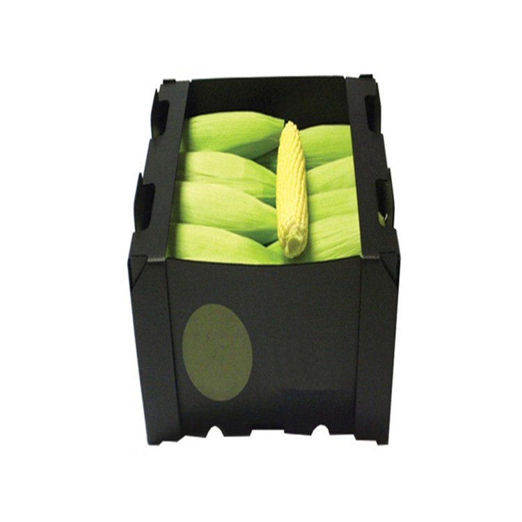 Plastic corrugated box for fruit and vegetable