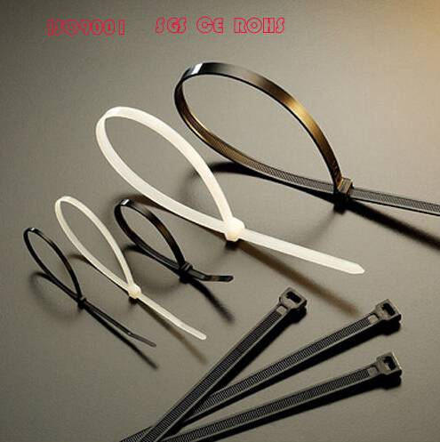 Free Sample Slef Locking Nylon Cable Tie