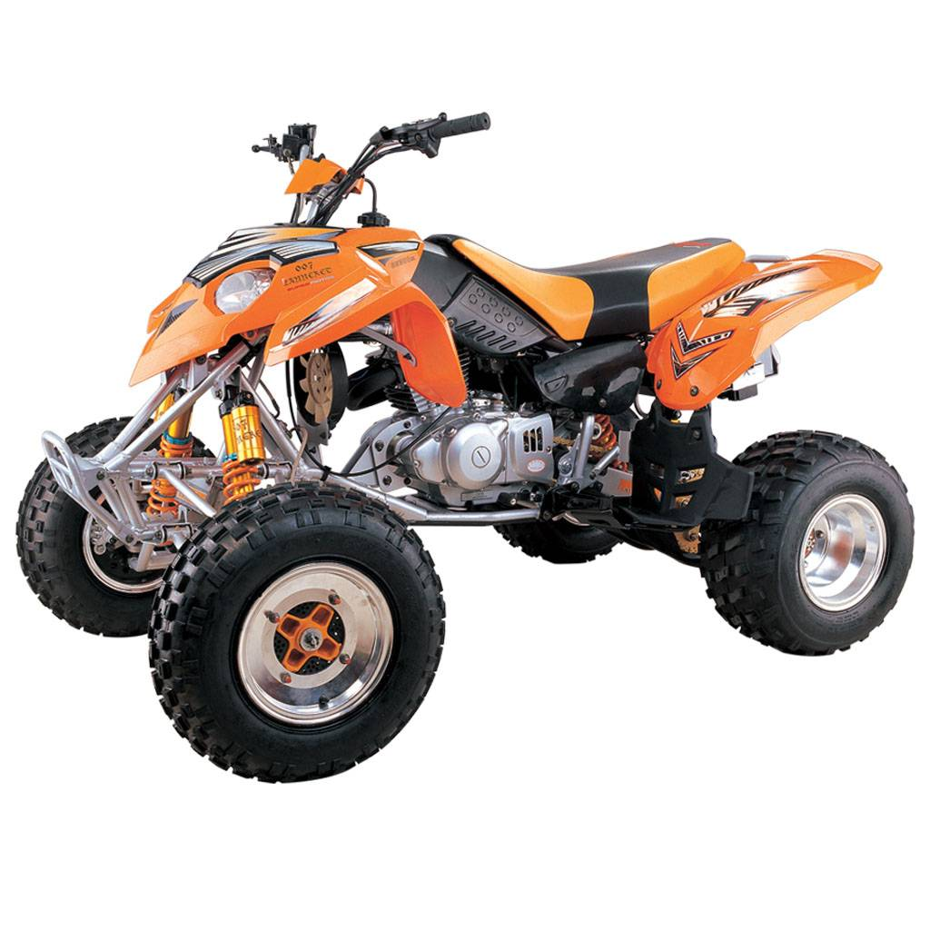 Predator style 300cc atv with ballonet absorb and disc braks