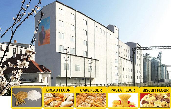 Multi-story Flour Milling Plant