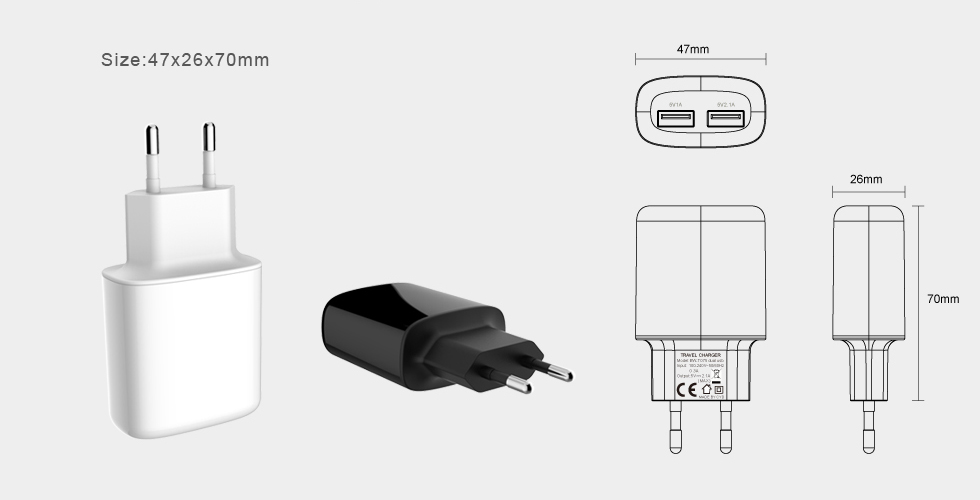 Dual USB Travel Charger BW-T075