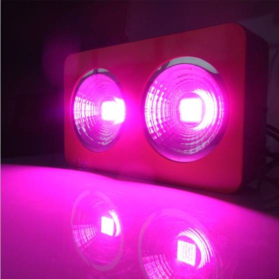 3 years warranty High Quality 400W Full Spectrum LED Grow Light Red Blue White UV  IRAC85~265V COB L