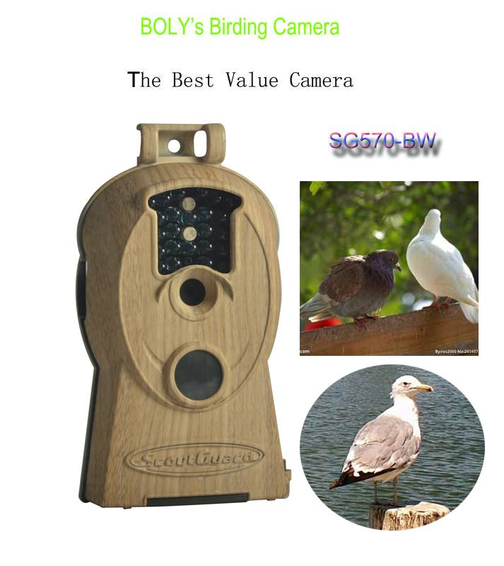hottest selling bird watching binoculars telescope trail scouting game camera with 10MP images and 7