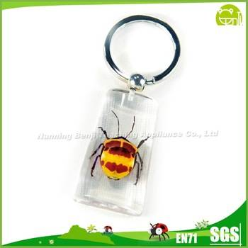 Distinctive Personality Cheaper Specimen Keychain Gifts Carry Small Pendant