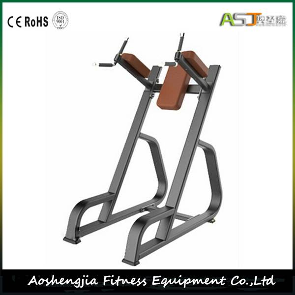 S841 Vertical Knee Up Gym Equipment