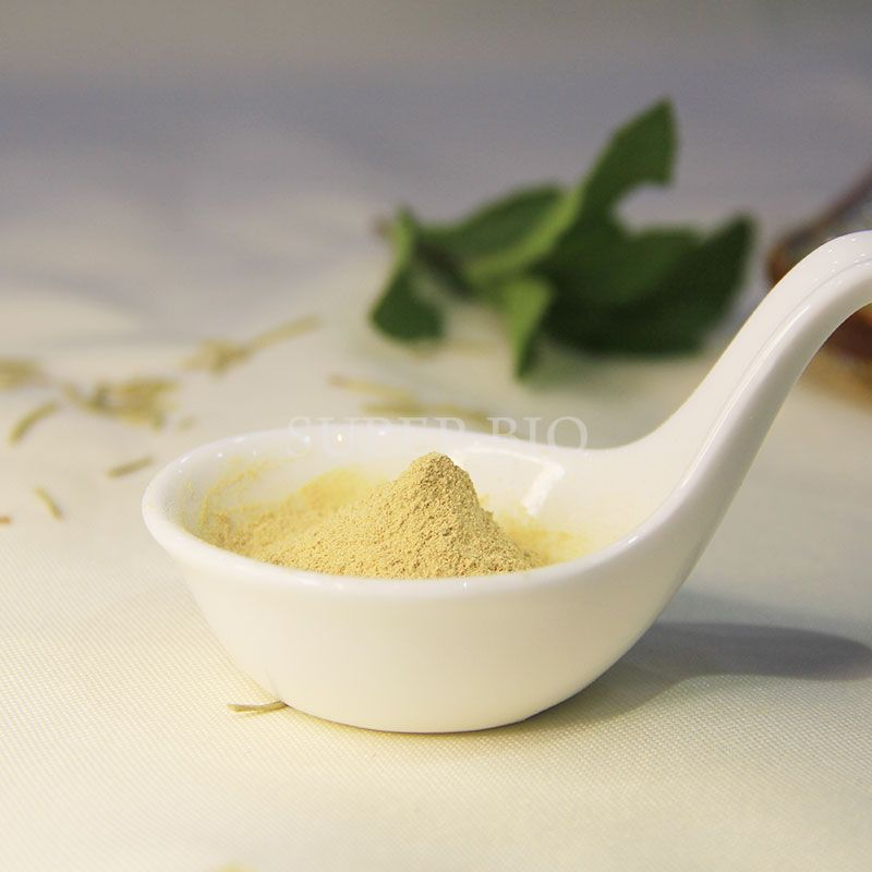 Carnosic Acid 60% Rosemary Leaf Extract Wholesaler Rosemary Extract-Oil soluble Series