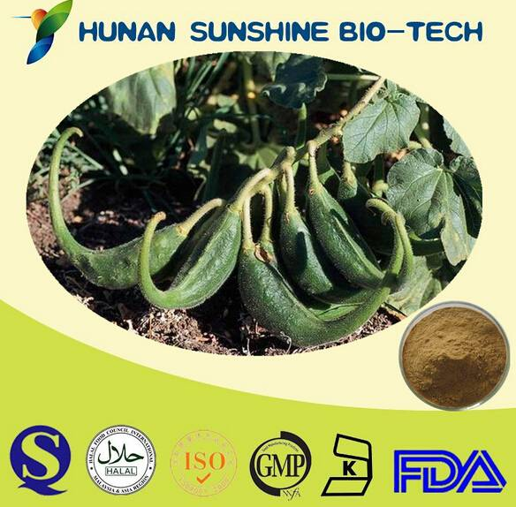Free Sample Harpagosides 5% Devil's Claw Rroot Eextract,Devil's Claw Extract  5% Devil's Claw Rroot