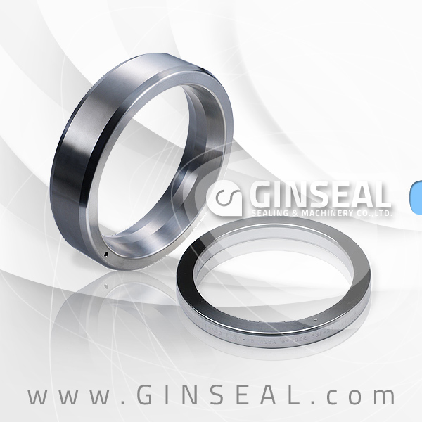 Octangonal ring joint gasket