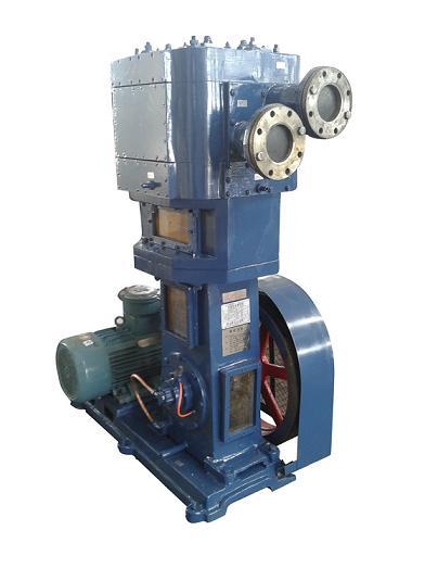 Oil-Free Vertical Anticorrosion Vacuum Pump (2WLW-B/F/T Series)