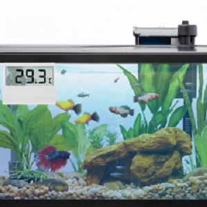 Electronic Digital Fish Tank Thermometer with LCE Display-2020