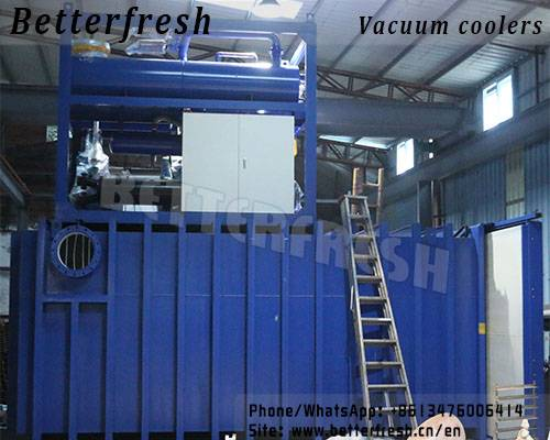 Germany technology vegetable Vacuum cooling machine