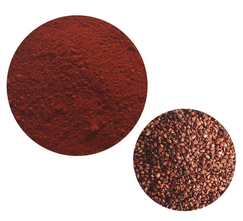 Grape Seed Extract 84929-27-1