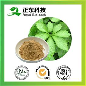 100% raw material 80% saponins powder Gynostemma P.E