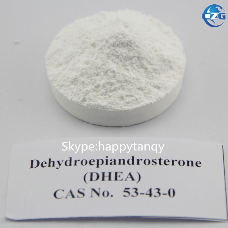 High purity USP GMP Grade hot selling  7-keto DHEA