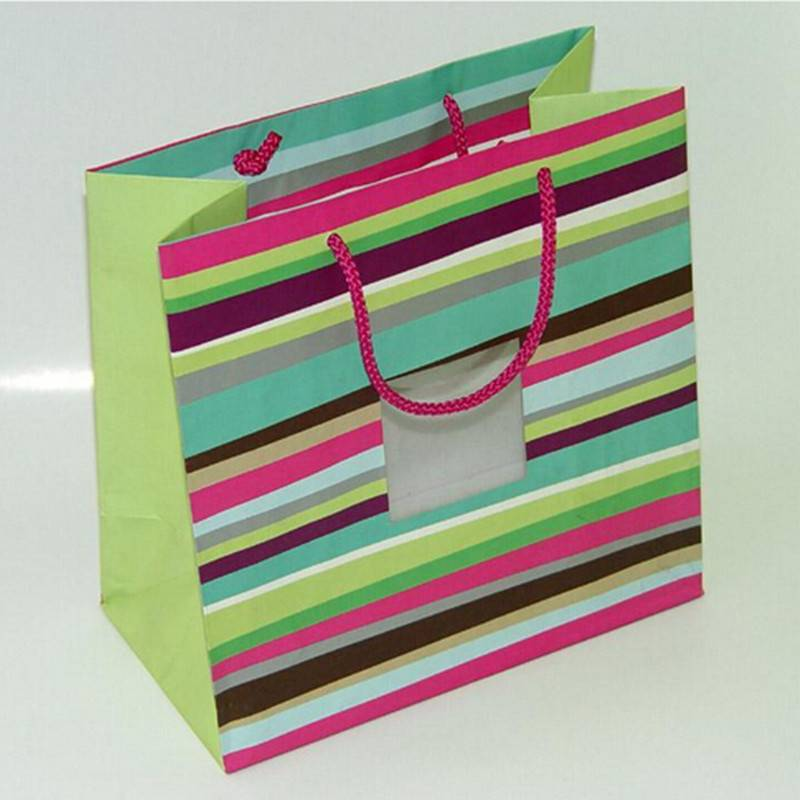 157gsm gift paper bag with tag