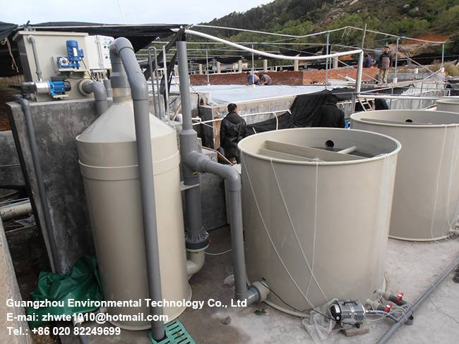 Fish Farming Supplies Indoor recirculating aquaculture system