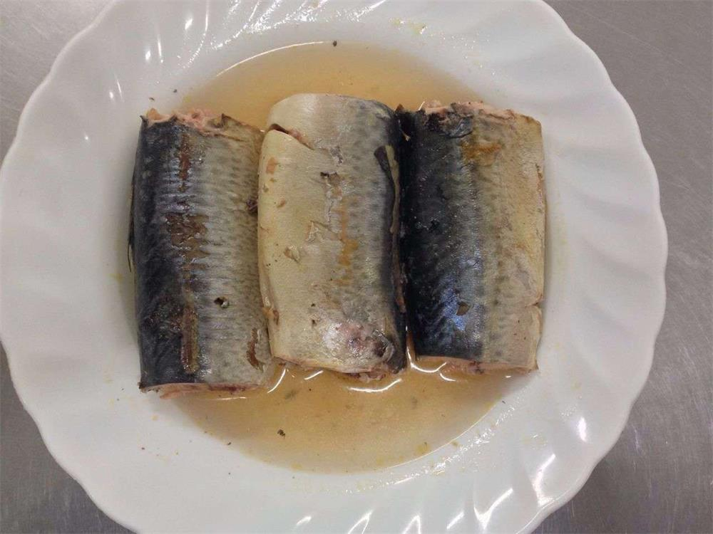 425g/240g canned Mackerel in Brine,canned fish manufatcurer, cylinder can, halal, haccp certificate.