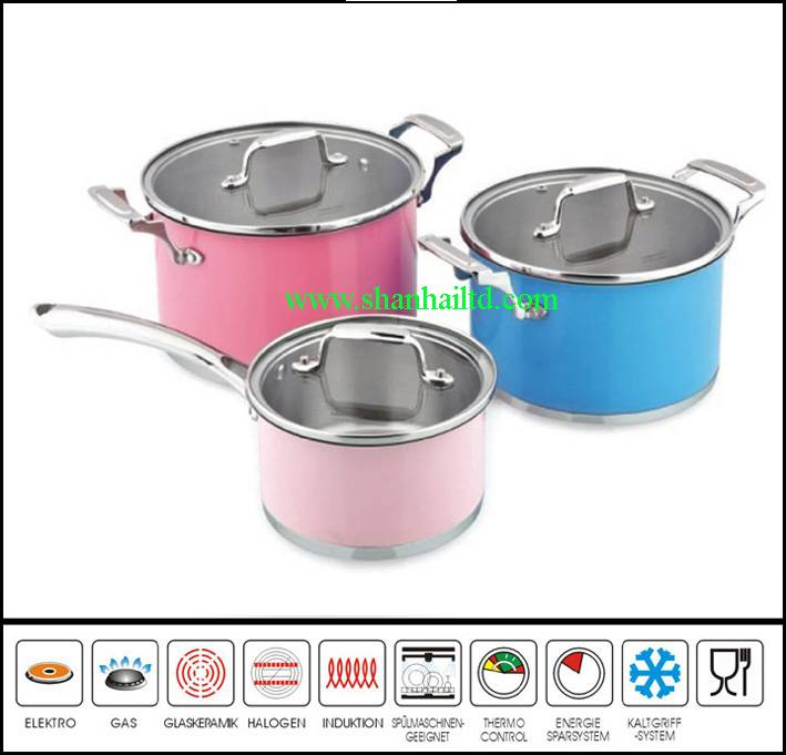 6 Pcs color coating stainless steel cookware set Sc870