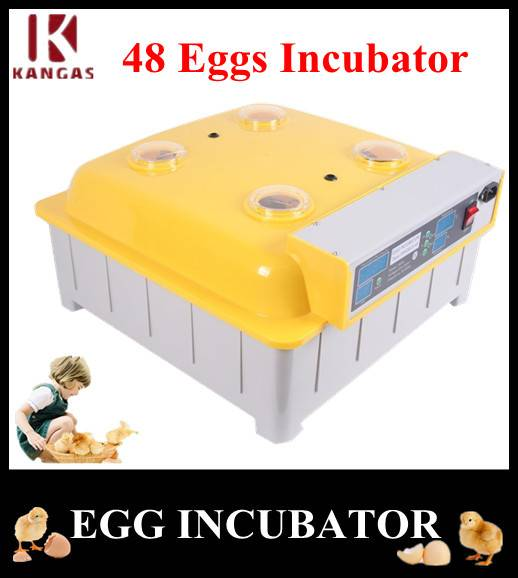 CE Approved Mini Egg Incubator for Sale (KP-48)
