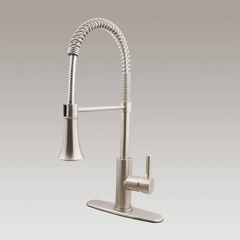 Single handle spring spout kitchen faucet