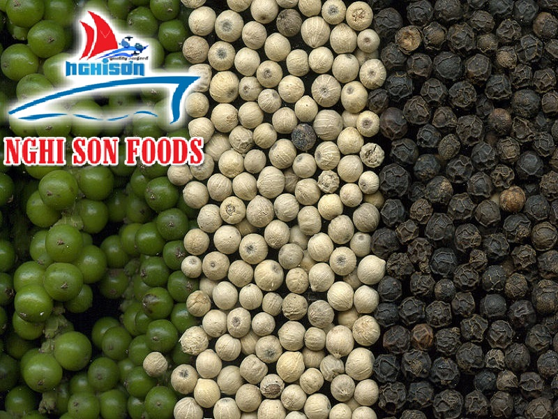 Pepper from Vietnam (0084 905179759)