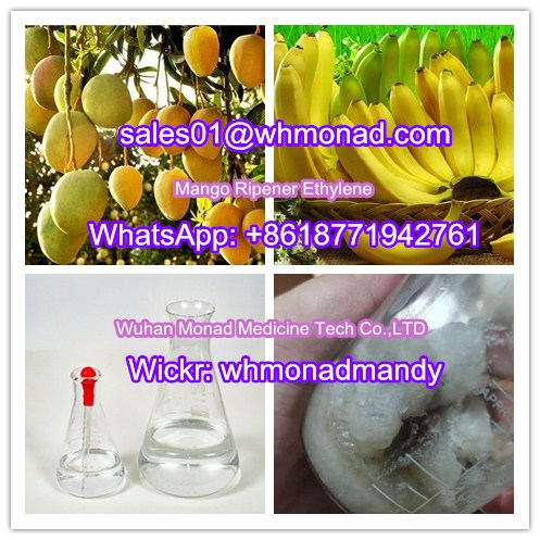Hot Sale Mango Ripener Ethylene / Banana Ripener for India and Pakistan Market