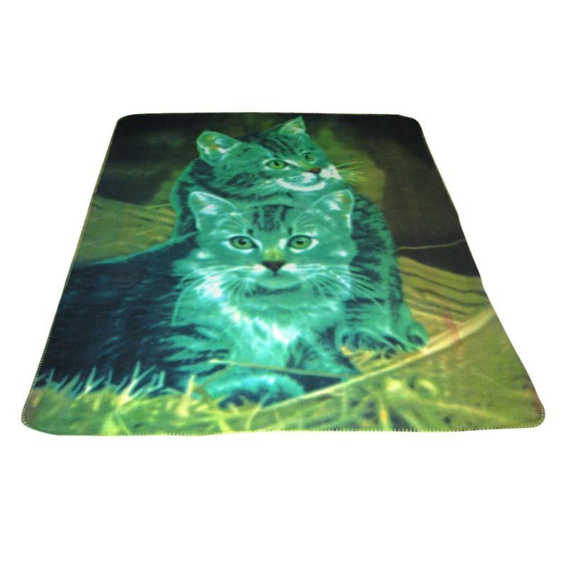 Micor Fleece Blanket