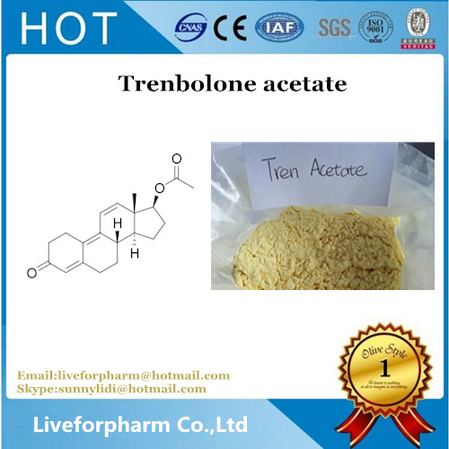 Trenbolone Raw Powder Steroid Trenbolone Acetate use for muscle and strength gain CAS 10161-34-9