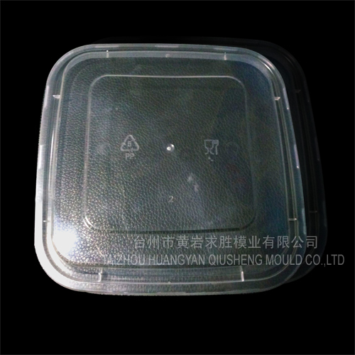 pp plastic squared lid of lunch boxes plastic mould