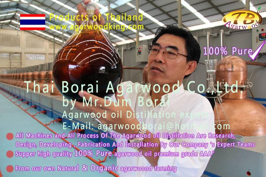 agarwood oil-agarwood-gaharu oil-oud oil-oudh oil-agarwood chips