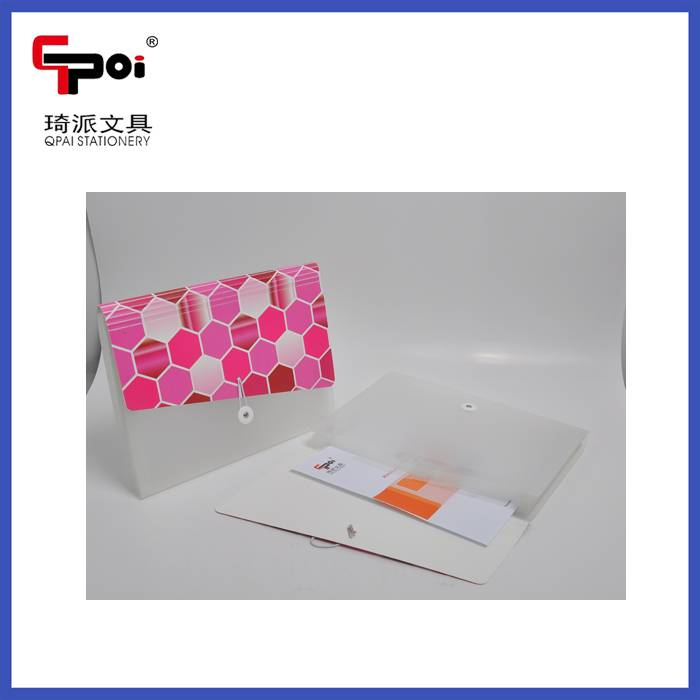 PP Plastic File Case With Hand Carring Expanding Folder Case